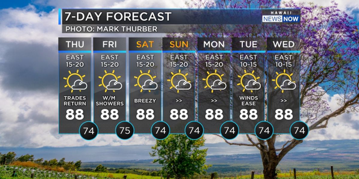 Forecast: Best weather on the planet returns!