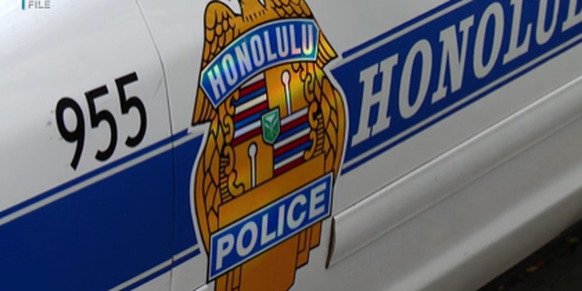 Audit praises HPD for cracking down on officer misconduct but criticize ability to prevent it