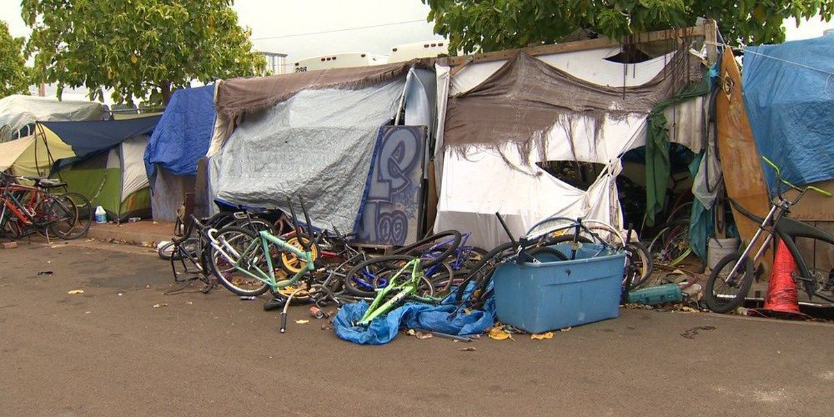 Expert says Hawaii Poll shows public is engaged and frustrated by homelessness