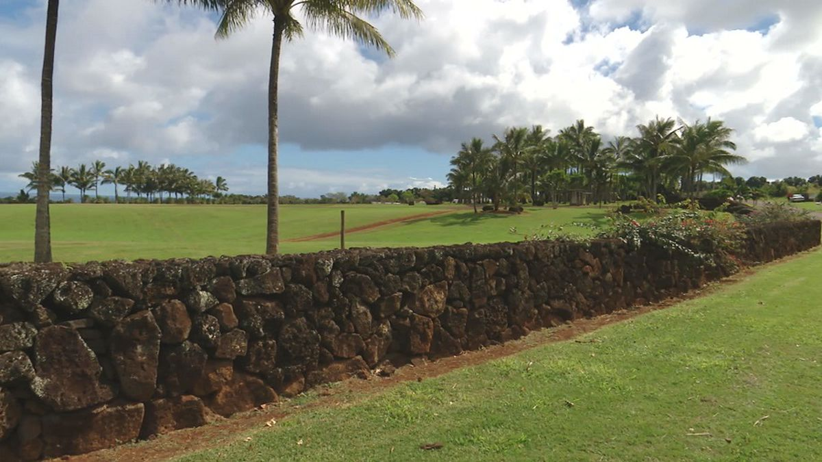Public auction set for land parcels on Facebook CEO's Kauai estate
