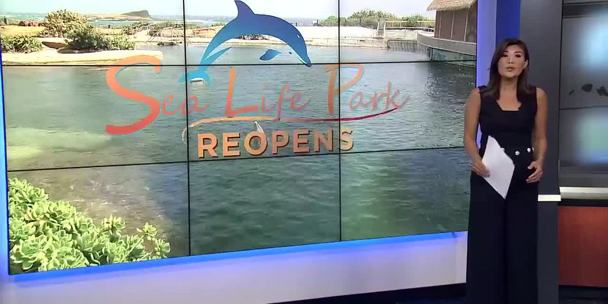 Sea Life Park to reopen after being closed for over 350 days