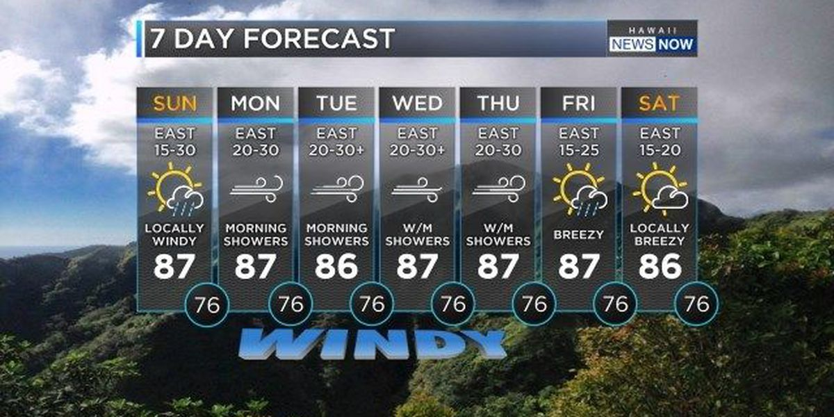 Forecast: Windy weather on the way