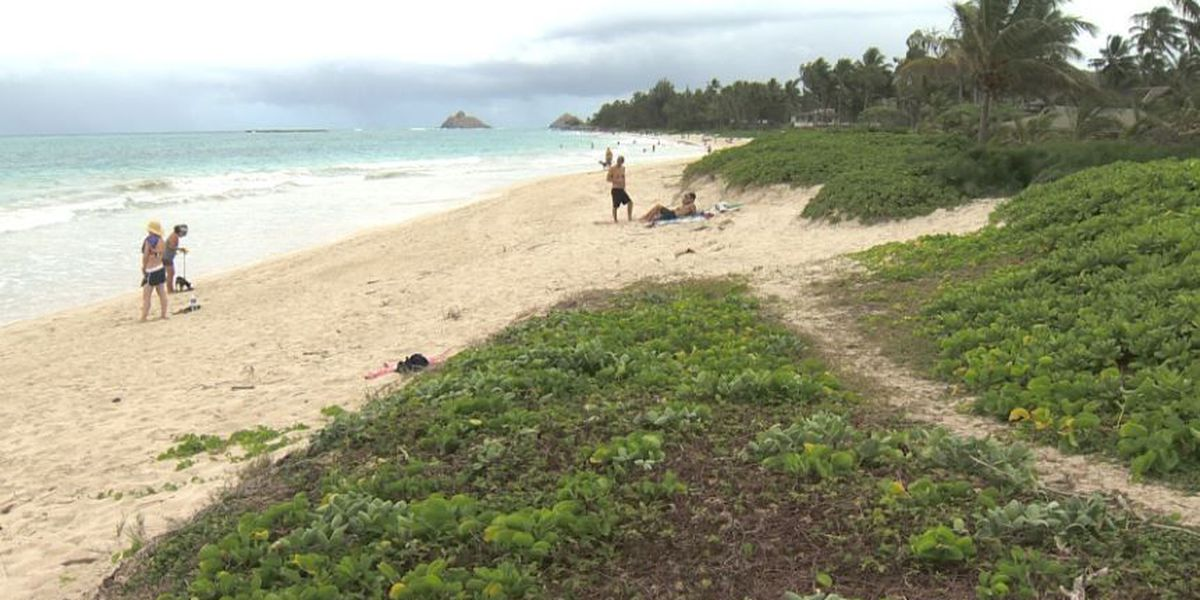 Parts of Kailua Beach to close for sand pushing project