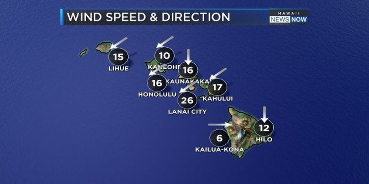 Forecast: Steady tradewinds expected to last all week