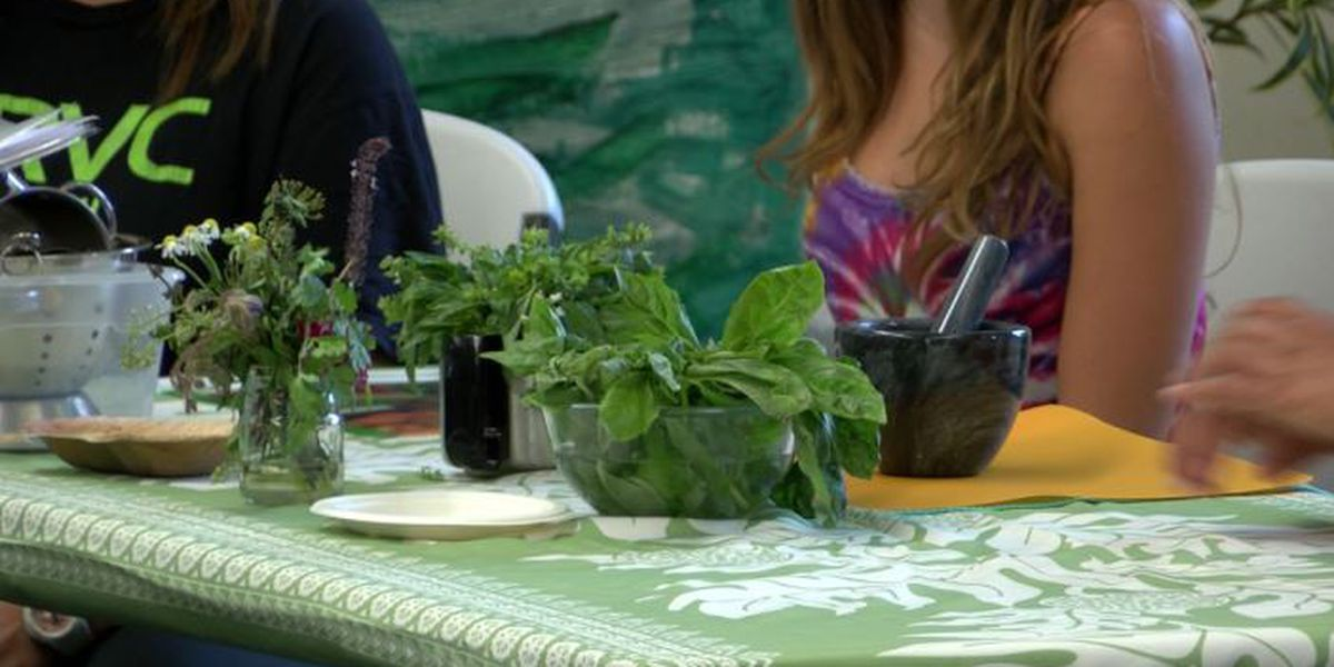 Preschool teachers take (and teach) a lesson in farming, healthy eating