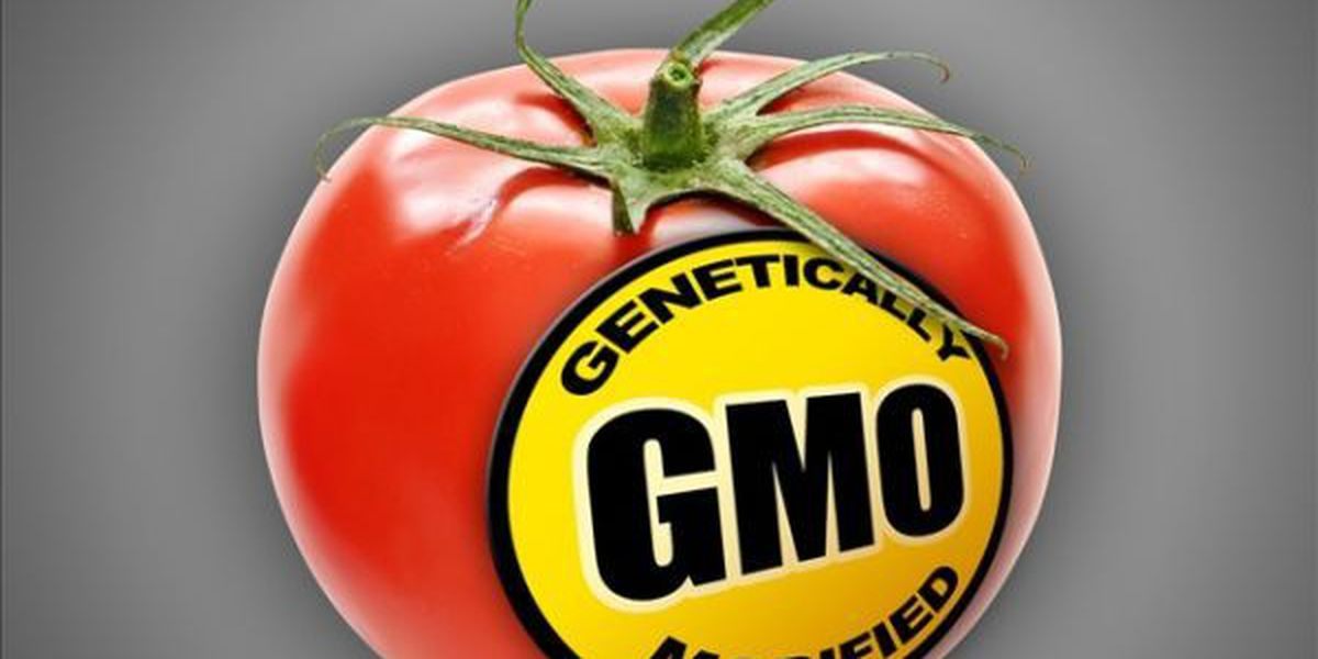Kauai, state form group to study pesticides, GMO