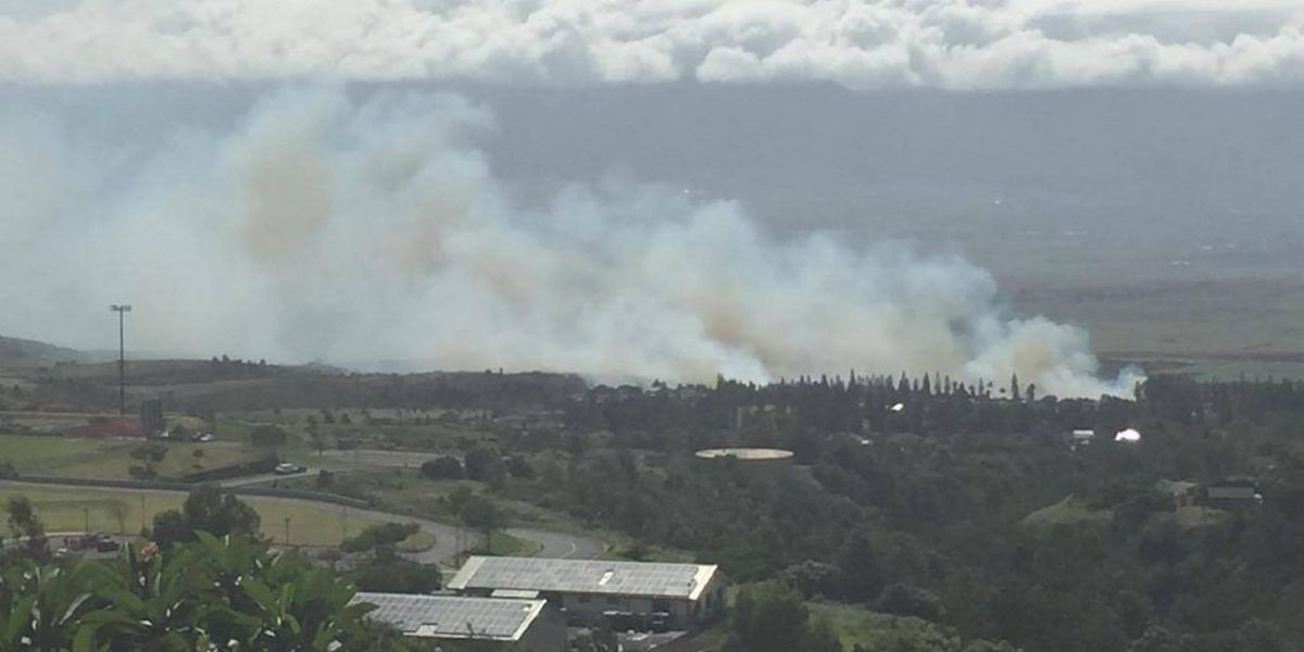 Brush fire in Maui scorches 200 acres of land