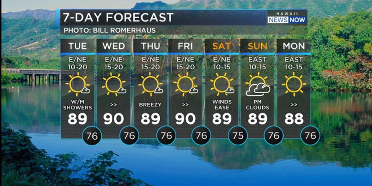 Forecast: Breezy trade winds on the way