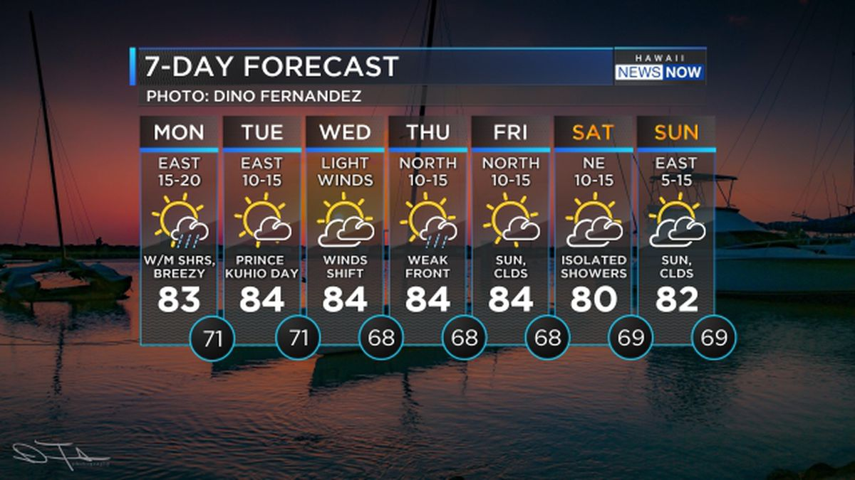 Forecast: More typical trade wind conditions; lighter winds on the way