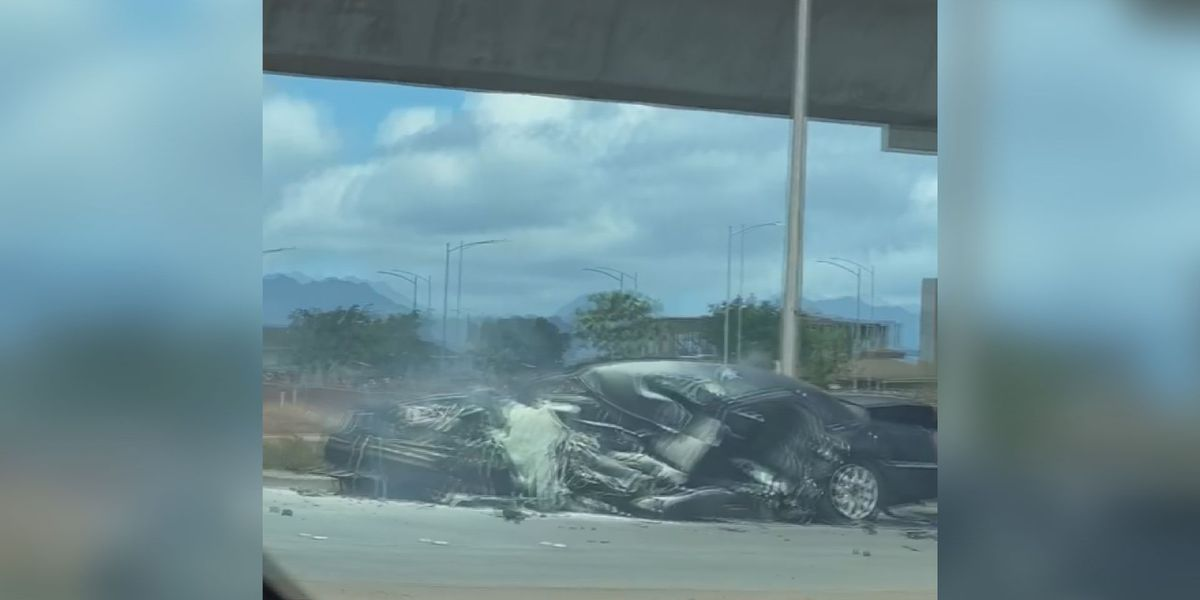 Driver killed after crashing into a Kapolei rail pillar identified