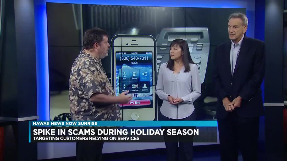 Officials see spike in consumer scams during holiday season