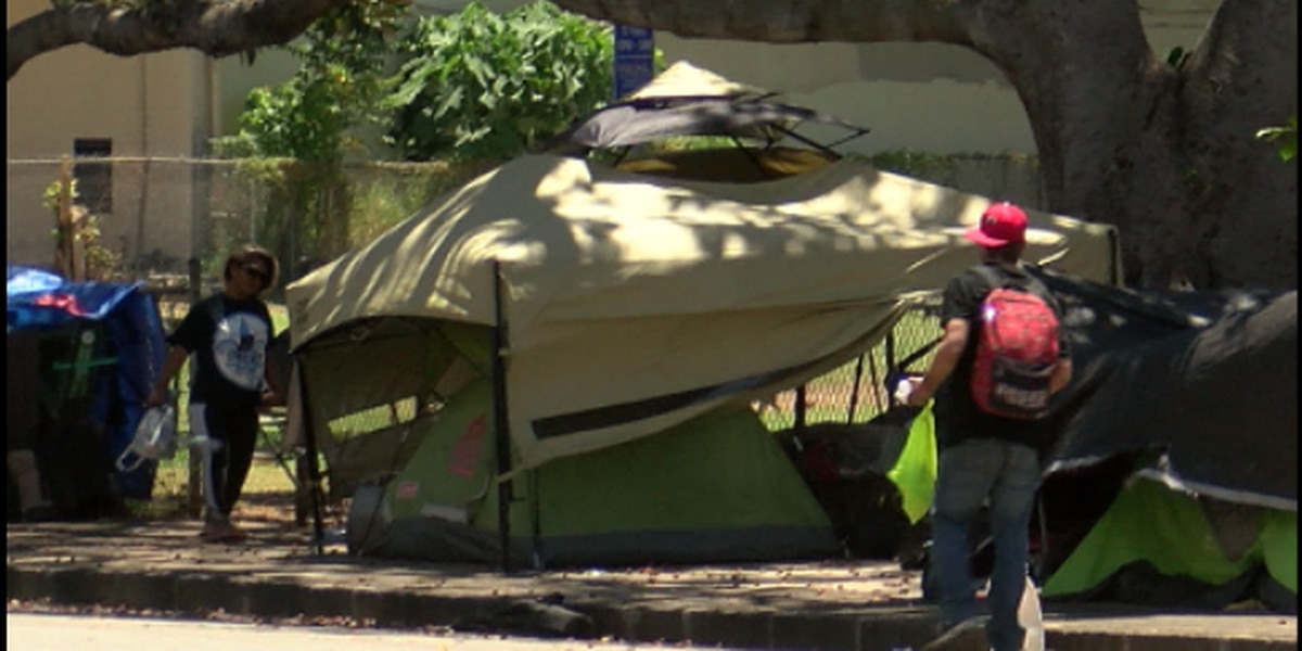 Advocates: Oahu's population of unsheltered homeless on the rise amid pandemic
