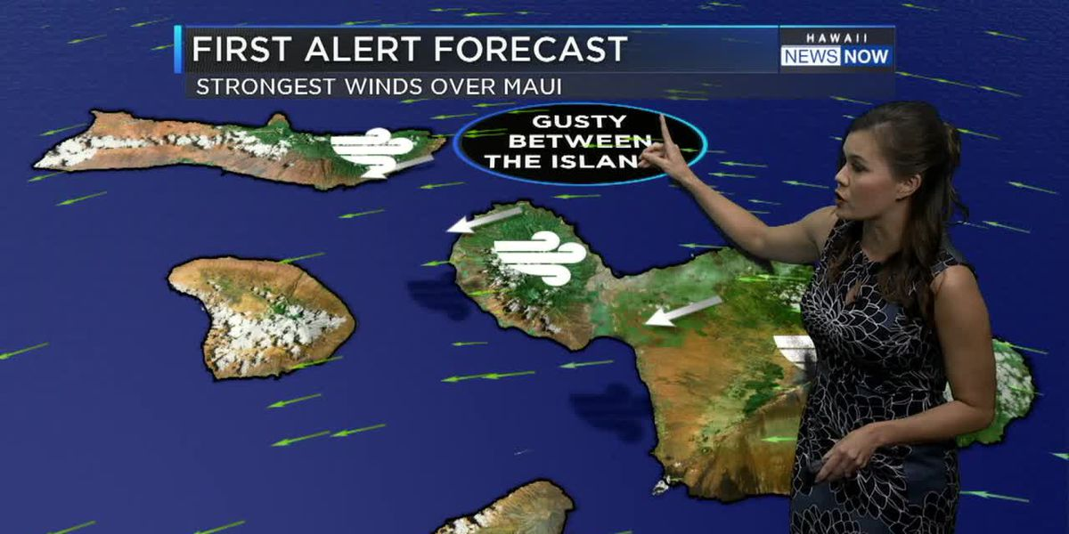 Gusty trade winds dominate the forecast for now