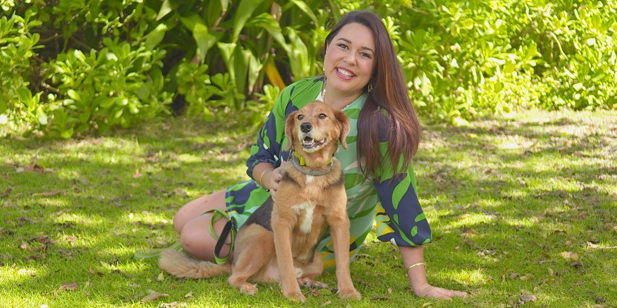 Hawaiian Humane Society PetWalk Paina 2018