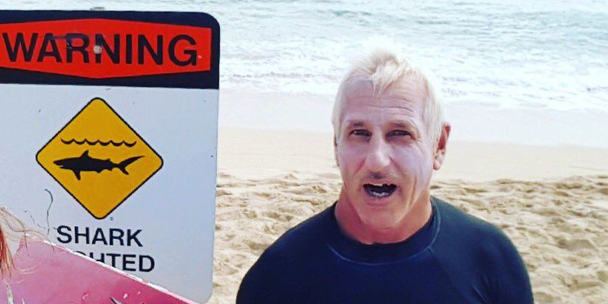 Warning signs posted at White Plains Beach after shark bites board