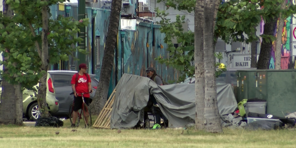 Count shows big decline in homelessness, but some doubt its accuracy