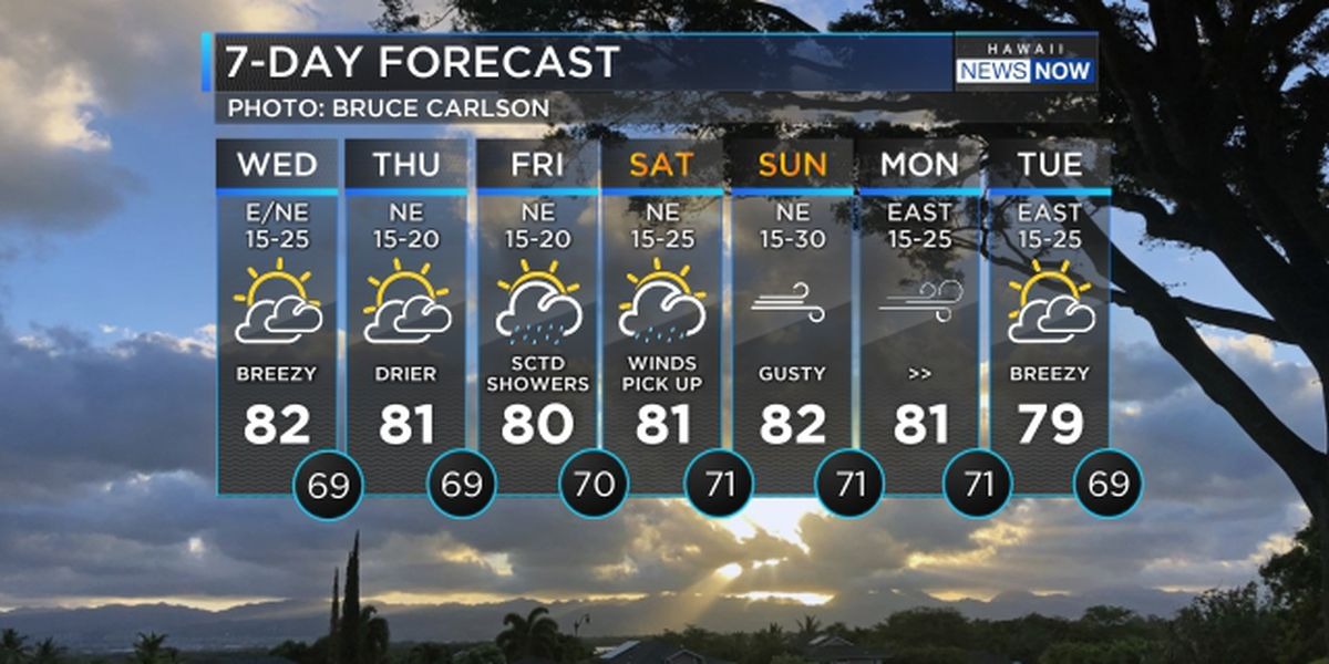 Forecast: Winds easing up, more rain due before the weekend