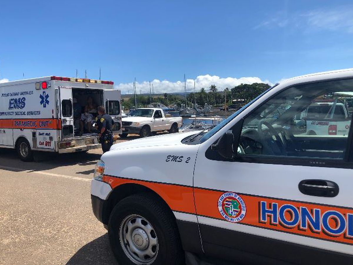 3 snorkelers suffer minor injuries after shark encounter off Haleiwa