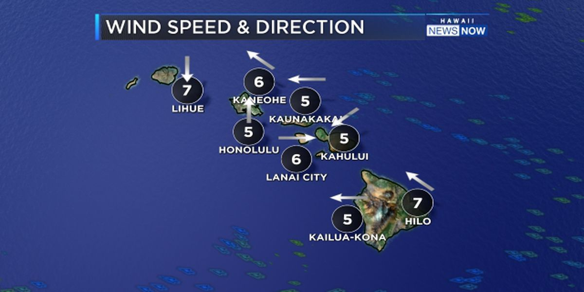 Forecast: Mostly dry with light winds to start the new year, but changes just ahead