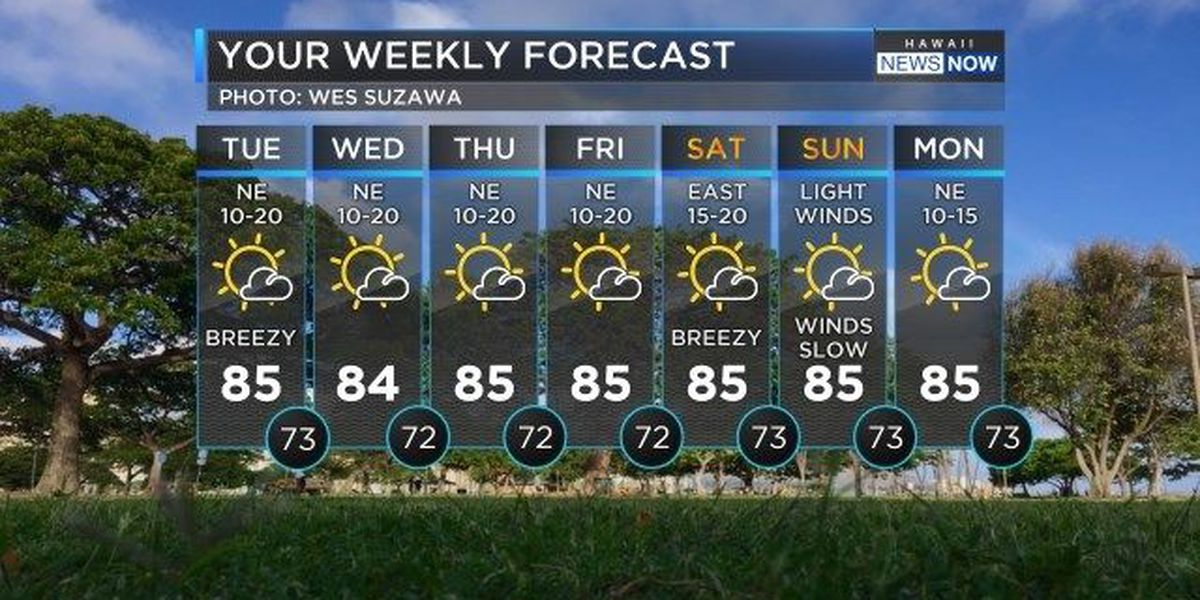 Forecast: Light trade winds and mostly sunny skies
