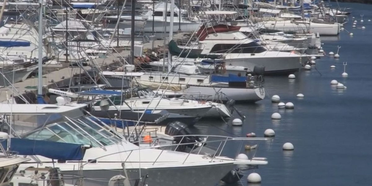 Years-long investigation into allegations of corruption at Boating Division drags on
