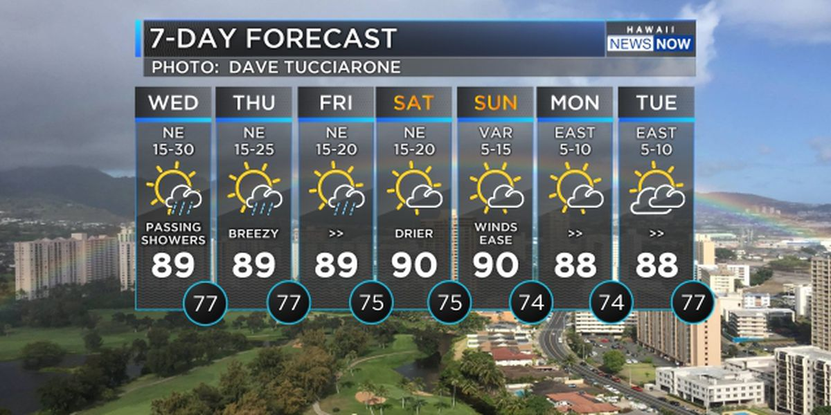 Forecast: Brisk trade winds to hold through Friday
