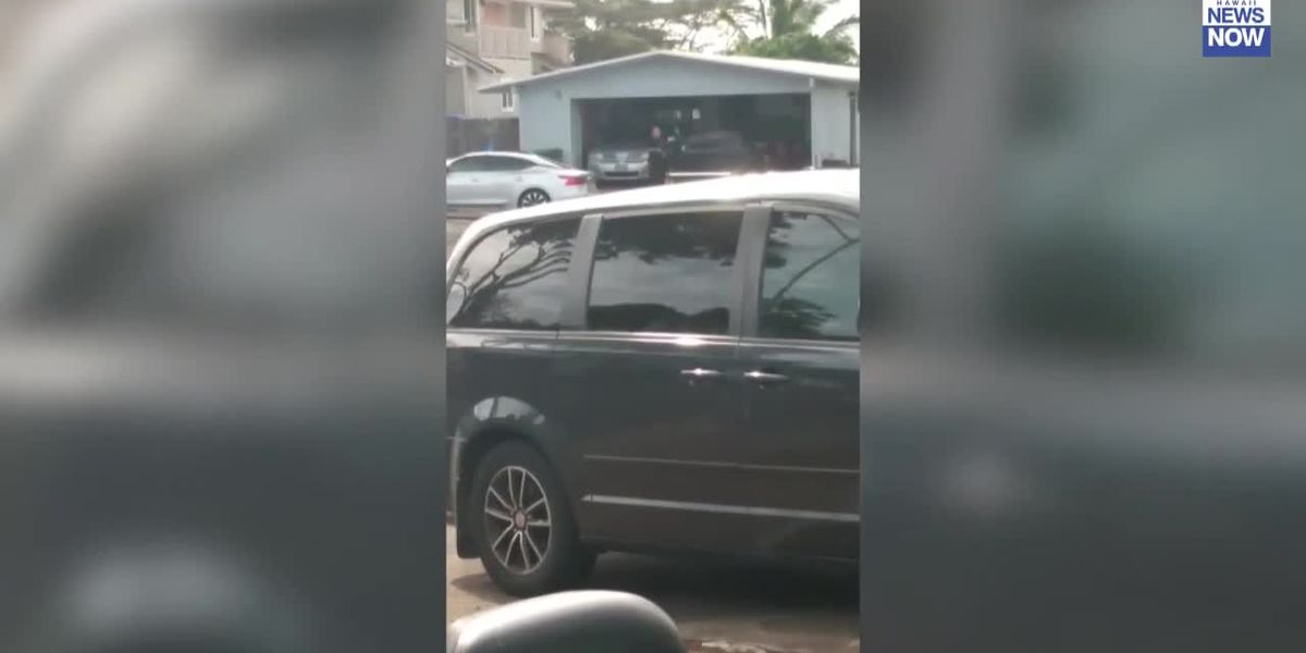 Cell phone video captures tense moments as gunshots are fired in Pearl City standoff