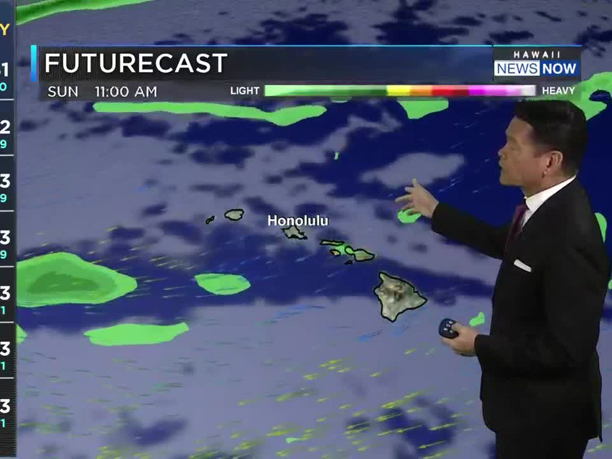 Forecast: Light winds on the horizon