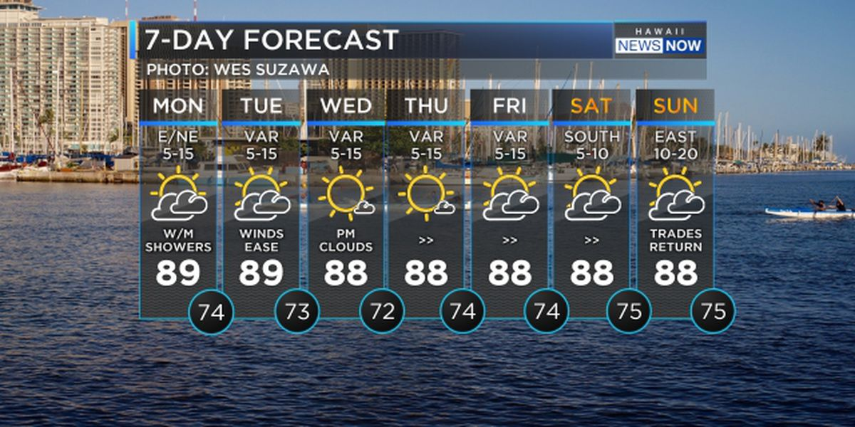Forecast: Light winds to persist through the week