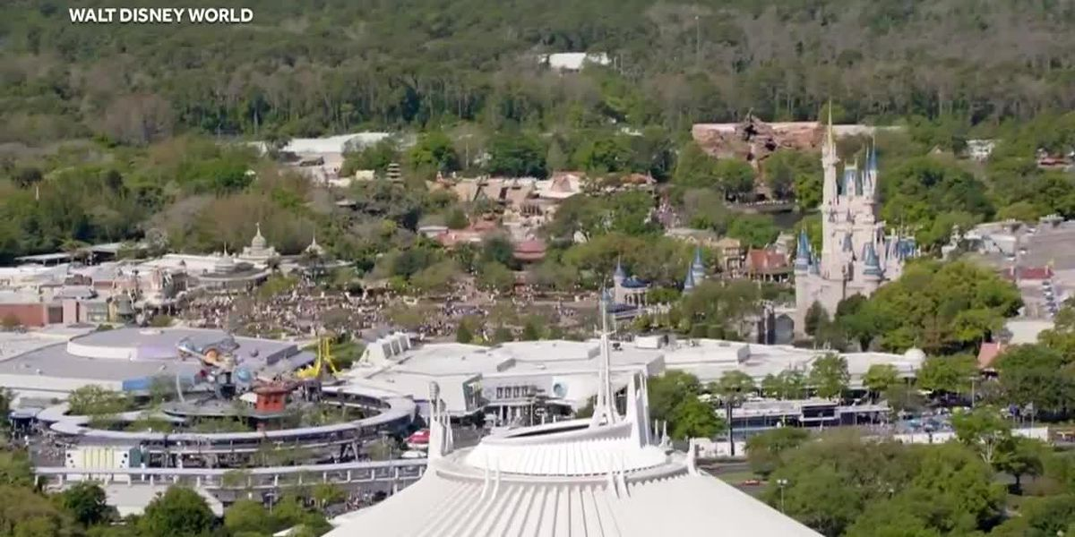 Man arrested after Disney ticket booker calls 911 about domestic violence situation