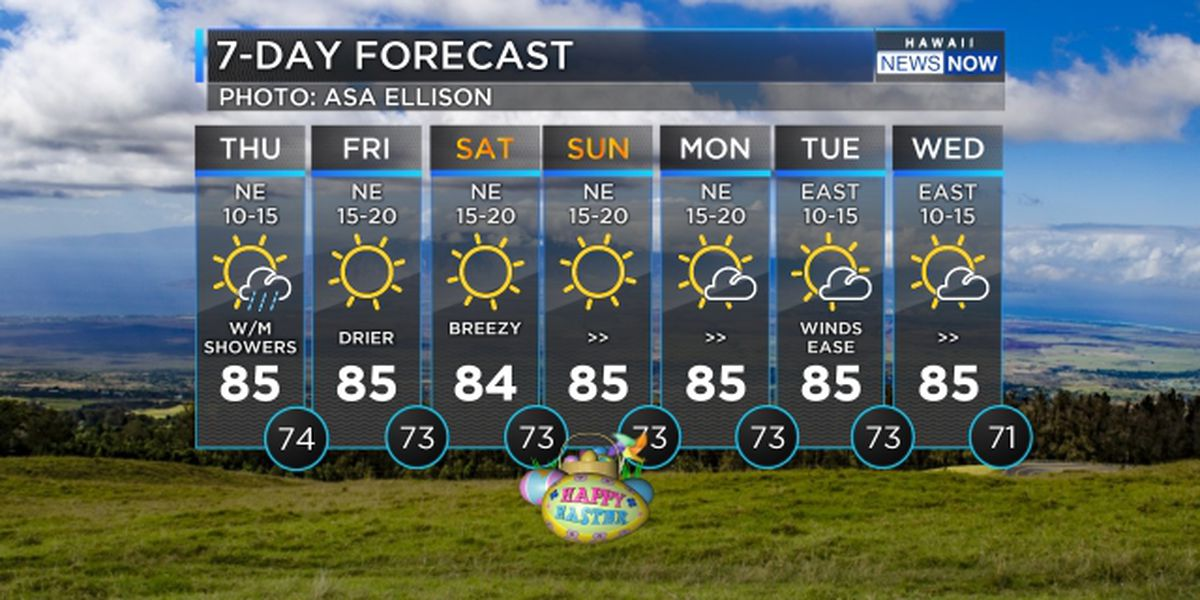 Forecast: Stronger trades and drier conditions ahead