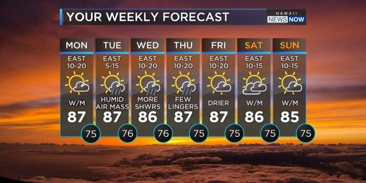 Forecast: Breezy trade winds, sunshine to kick off the work week