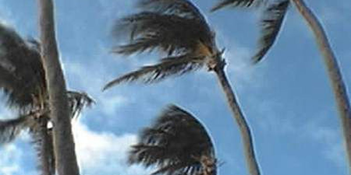 NWS issues wind advisory for some parts of the state