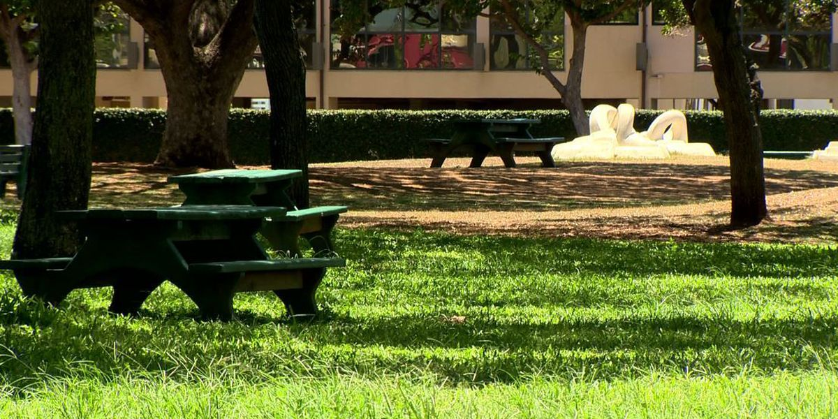 Violence near Oahu homeless areas appears to be on the rise