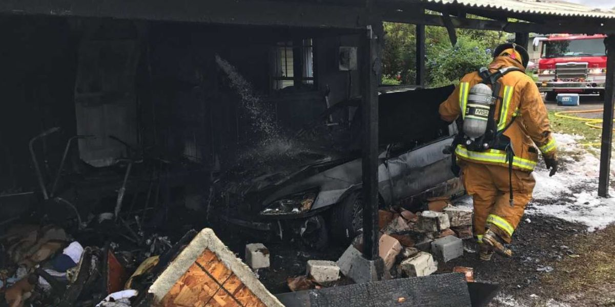 Two pet cats die in Kauai house fire that caused $300K in damage