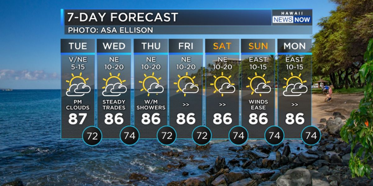 Forecast: Light winds continue with mostly dry conditions