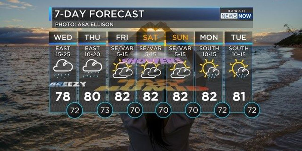 Forecast: Cloudy and wet weather continues