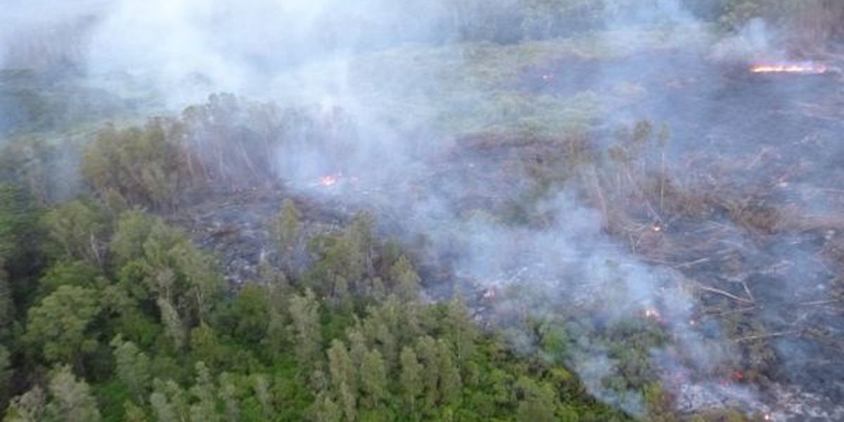 USGS projects Puna lava flow will now reach Pahoa on Nov. 1