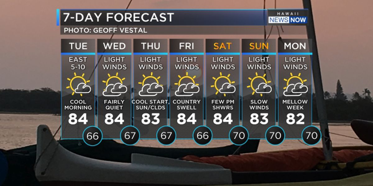 Light winds to persist through the weekend