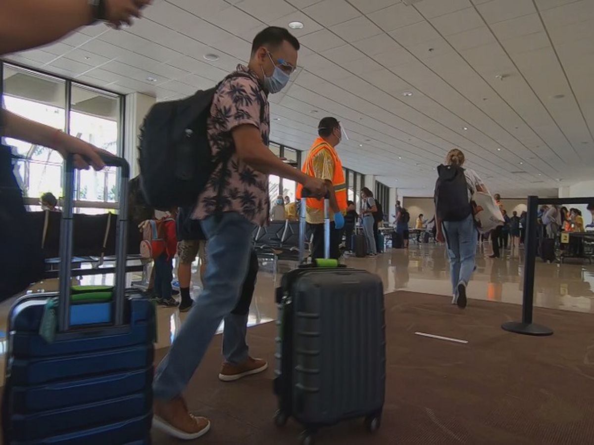 Hawaii lawmakers consider standardized pandemic travel rules
