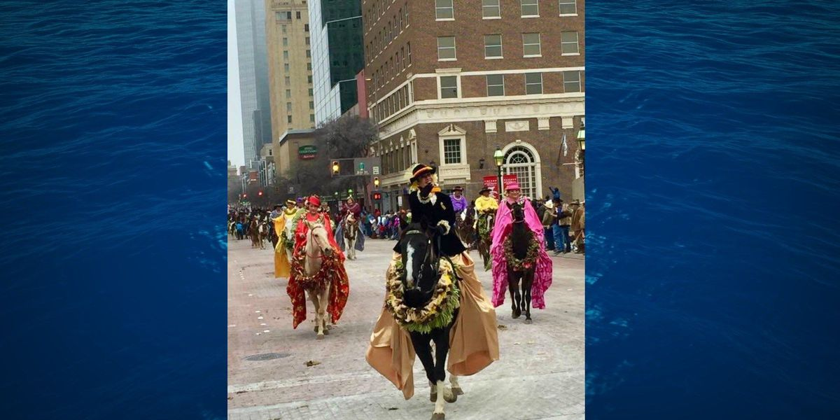 Hawaii Pa'u Riders represent islands in large Texas equestrian parade