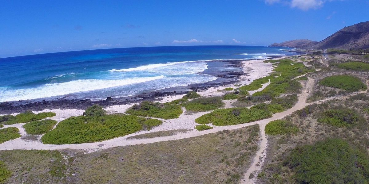 All seven miles of Oahu's Ka Iwi coast are now protected from development