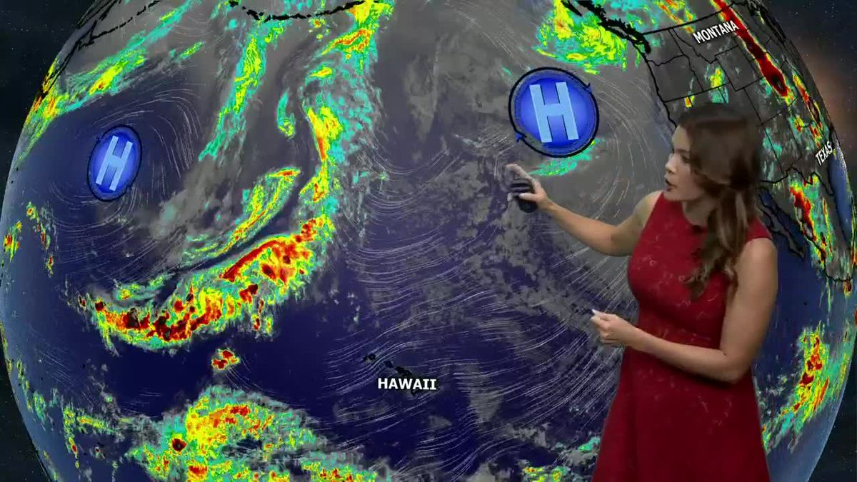 Tracking more trade wind showers for Friday night into Saturday