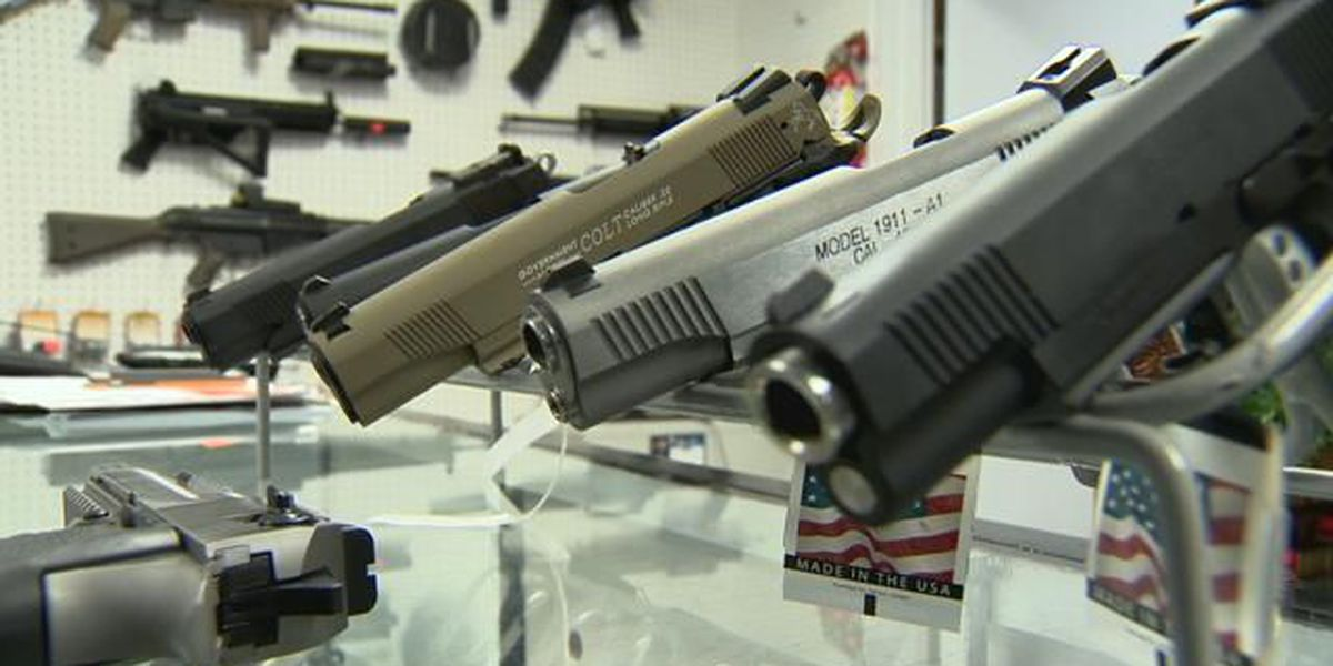 State, Hawaii County appeal ruling on firearm licenses
