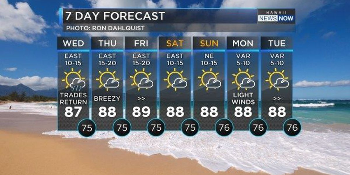 Forecast: Cooler conditions as tradewinds strengthen