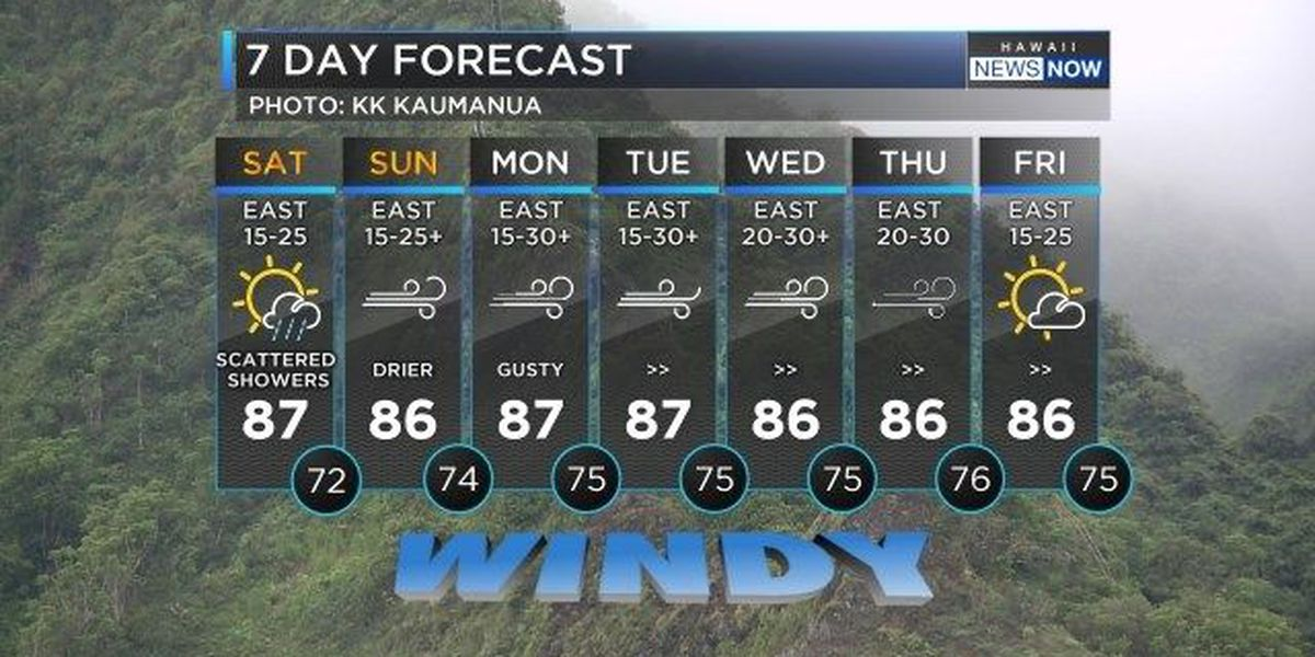 Forecast: Showers are decreasing, but trade winds increasing