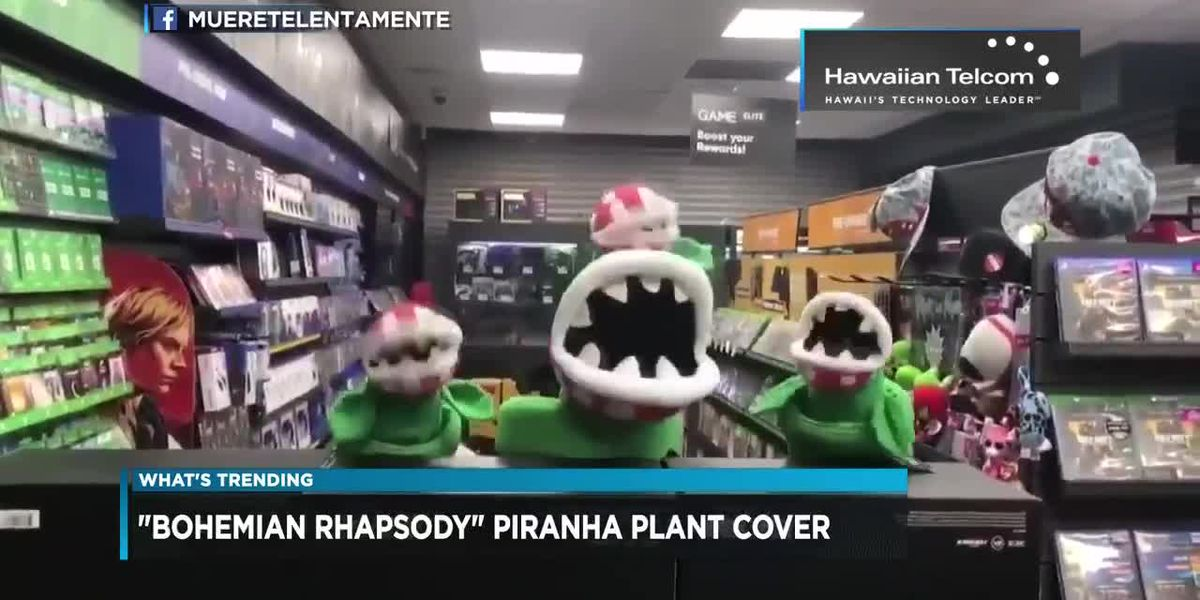 What's Trending: Piranha plants, Thanksgiving Tweets, and Aquaman on Amazon