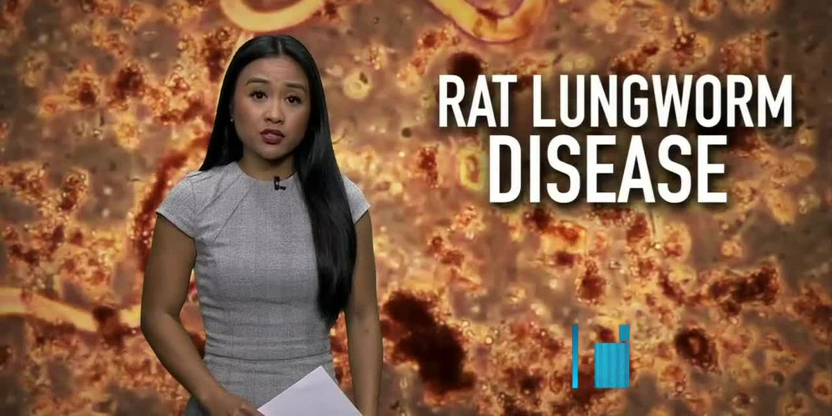 After alarming symptoms, a Big Island teen is diagnosed with rat lungworm disease