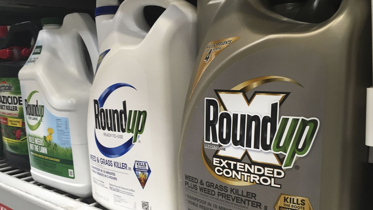 Mainland verdict linking Roundup to cancer applies to Hawaii cases