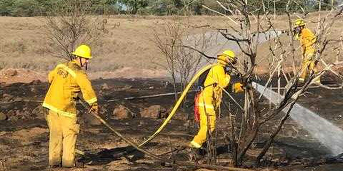 Juvenile arrested following a small brush fire in Kihei